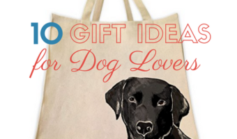 10 Gift Ideas for Dog Lovers