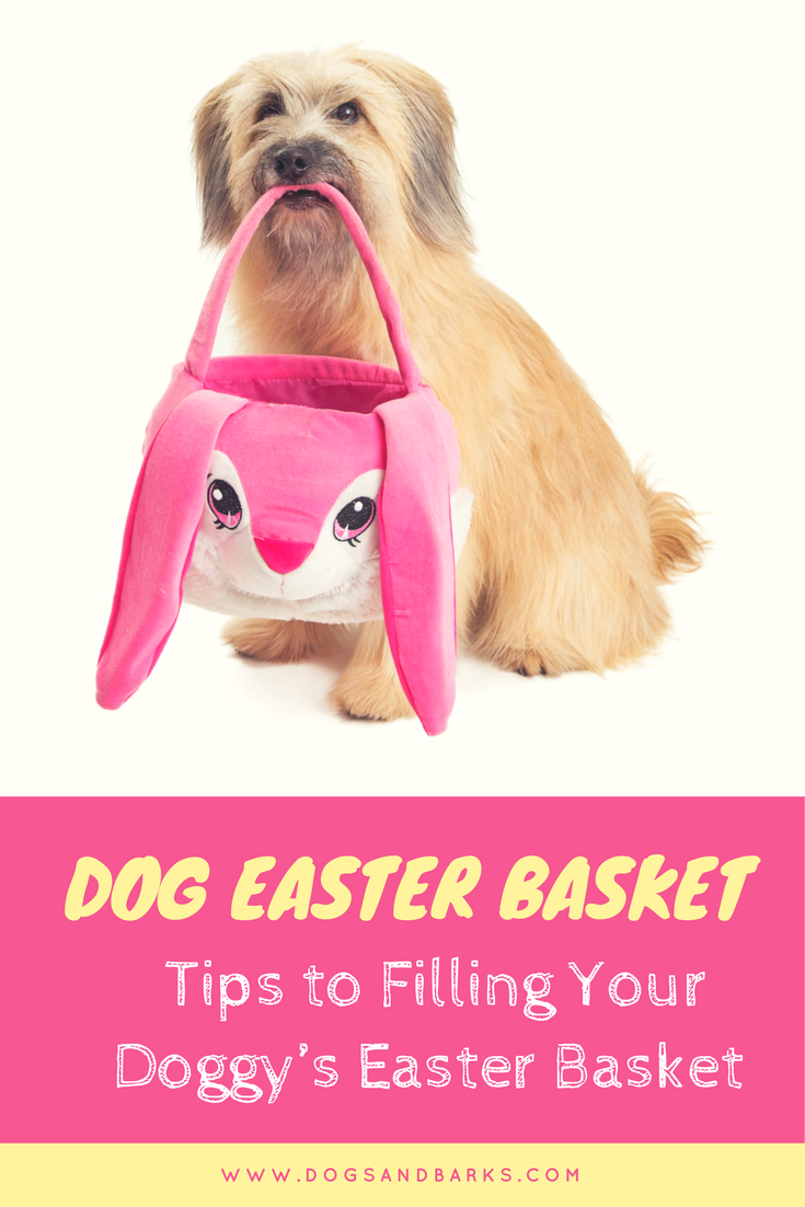 Dog Easter Basket: Ideas For Filling Your Doggie's Basket
