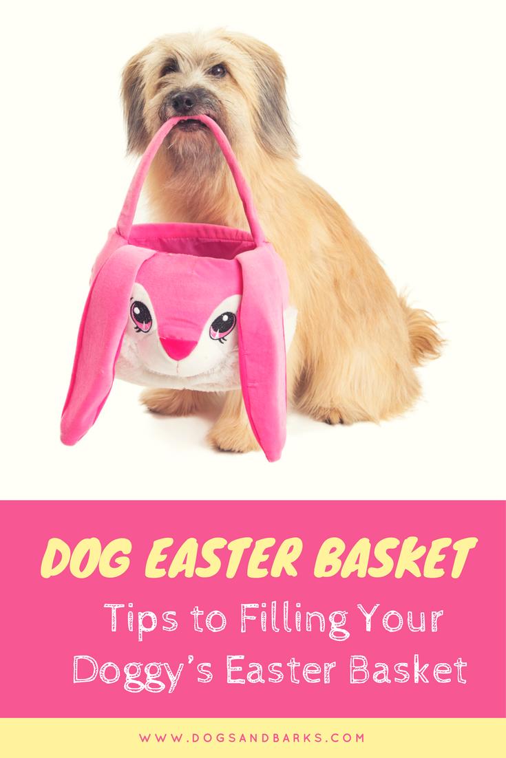 Dog Easter Basket: Ideas For Filling Your Doggie's Basket